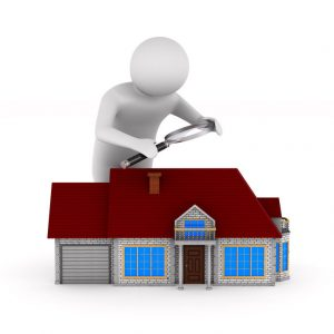 Roofer Roof Inspection Roofing Expert